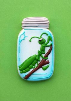 Praying mantis in a jar