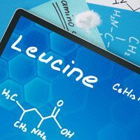 Leucine: The Amino Acid Scientifically-Proven To Build Your Bones And Your Muscles