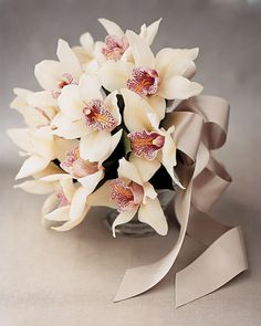 White cymbidium orchids are tied together with a silver-gray ribbon in this charming arrangement.