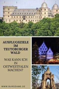 Im Teutoburger Wald kann man natürlich wandern. Es sehr viele wunderbare Wanderwege in Ostwestfalen. Der Teutoburger Wald hat aber auch sehr viele mystische Plätze und historische Orte, es gibt viele Burgen und alte Klöster. Ostwestfalen gehört zu den spannendsten Reisezielen in NRW. # #nordrheinwestfalen #ostwestfalen #teutoburgerwald #Sehenswürdigkeiten Reisen In Europa, Europe Travel Guide, Big Ben, Explore, Mansions, Dresden, House Styles, World, Building