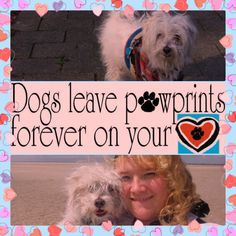 #Dogs leave pawprints forever on your #heart