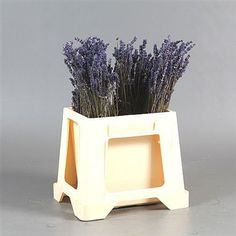 Buy Purple Lavender dark Blue Dried) at wholesale prices & direct UK delivery. and wholesaled in Batches of 40 bunches. No minimum order required - Floral accessories also available. Cut Flowers, Wild Flowers, Florist Supplies, Vintage Weddings, Table Plans, Flower Ideas, Purple Wedding, Wedding Bouquets, Dark Blue