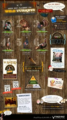 Turkey Hunting Facts for Beginners #infographic #hunting Almost that time of year!