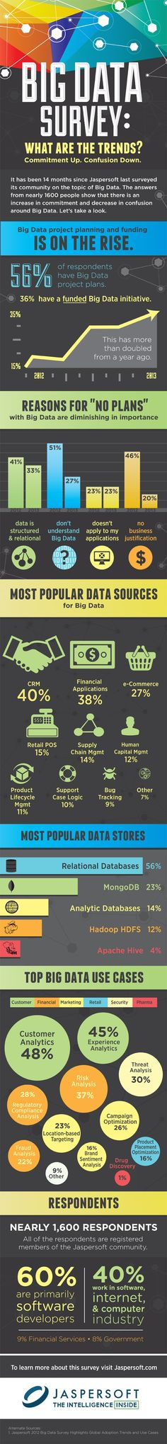 What Are The Trends: Big Data Survey - Infographic