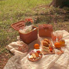 Nature Aesthetic, Summer Aesthetic, Aesthetic Food, Disney Aesthetic, Aesthetic Outfit, Beige Aesthetic, Picnic Date, Summer Picnic, Spring Summer