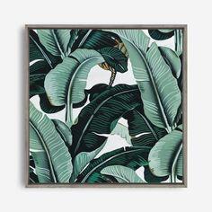 Featuring a scene of tropical banana palms, this square canvas print was originally hand painted. Mirror Artwork, Canvas Artwork, Canvas Art Prints, Canvas Fabric, Framed Prints, Mdf Frame, Box Frames, Canvas Frame, Banana Palm