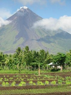 A shame that there is no name to the mountain in the background in this beautiful shot taken in the Philippines. I would guess it is Matutum in the Northern Philippines, it is the only one I recall having such a pointed peak.