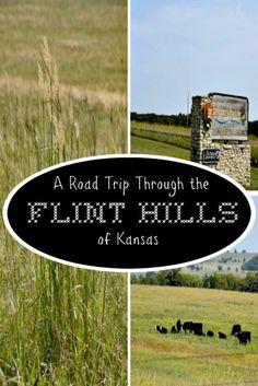 A road trip through the Flint Hills of Kansas will fill your senses with wonder & beauty. Stop by historic Council Grove & Tallgrass Prairie along the way. Kansas Day, Kansas City Missouri, Road Trip Essentials, Road Trip Hacks, Travel Tours, Travel Usa, Travel Ideas, Kansas Attractions, Manhattan Kansas