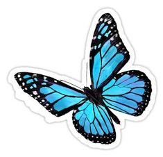Blue Butterfly Discover Light blue butterfly Sticker by VikiKL Decorate laptops Hydro Flasks cars and more with removable kiss-cut vinyl decal stickers. Glossy matte and transparent options in various sizes. Super durable and water-resistant. Stickers Cool, Bubble Stickers, Phone Stickers, Printable Stickers, Tumblr Sticker, Ps Wallpaper, Butterfly Wallpaper, Butterfly Stencil, Laptop Stickers