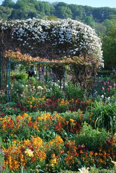 For Monet's garden. Just because it exists. Maybe that's enough.
