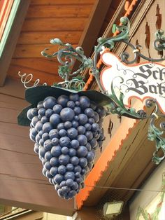 Grapes leave little doubt as to the establisment's business. Restaurant/wine bar Schicketanz, Batzenhäusl in Kufstein, Austria Sign O' The Times, Storefront Signs, Cafe Sign, Different Signs, Pub Signs, Lovely Shop, In Vino Veritas, Business Signs, Store Signs