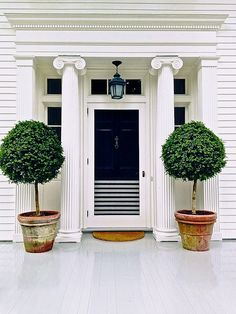 lovely classic colonial entry, potted trees, subtle screen stripe detail