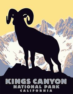 Goat Rocky Mountain National Park Colorado Travel 16X20 Vintage Poster FREE S//H