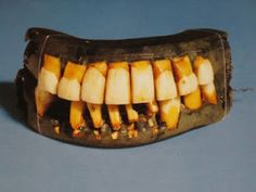 George Washington's teeth...kid's love gross stuff! Should have kept my deceased parents dentures for aka President's Day show and tell or dental health... gross but captivating.