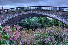 Bridge over Liffey Valley River in Lucan