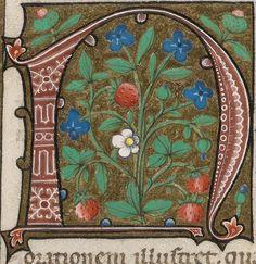 Manuscript letter 'n' posted by peacay, via Flickr, manuscript rights holder: Cologny, Fondation Martin Bodmer