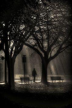 Follow me into the mist. by * Ahmad Kavousian *, via Flickr