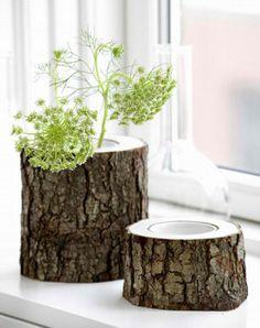 natuurlijke uitstraling, boomstam vaas maar zou ook goed gaan als voerbak voor onze poes