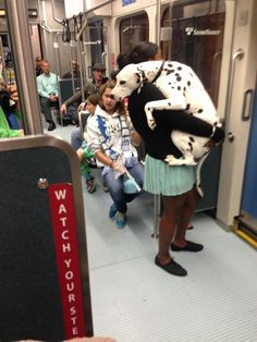 Poor dog's terrifying first train ride...
