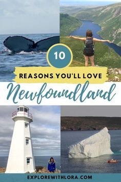 Newfoundland Canada, Newfoundland And Labrador, Whale Watching Destinations, Vacation Destinations, Vacations, Fogo Island Inn, Canadian Travel, World Heritage Sites, Cool Places To Visit