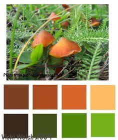 Mushroom color palette