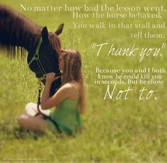 Horse+Riding+Quotes+and+Sayings | Pinned by Bella Perry-Decock