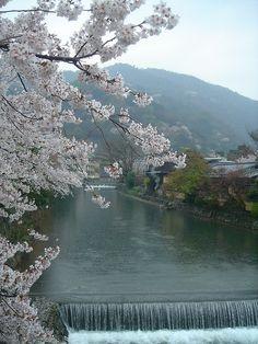 Kyoto, Japan.  Beautiful.