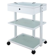 https://crazy4skin.com/collections/trolleys-beauty-carts/products/c4s-euro-trolley