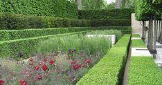 chelsea flower show laurent perrier garden 2009 Garden Landscape Design, Landscape Architecture, Garden Landscaping, Chelsea London, Chelsea Flower Show, Small Gardens, Outdoor Gardens, Beautiful Landscapes, Beautiful Gardens