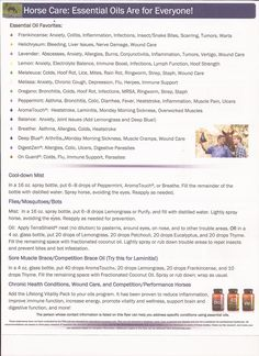 Page 2 of Horse Care Sheet of doTERRA val.myoilproducts.com