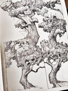 """Ruins and trees could be this week's theme. Art And Illustration, Ink Illustrations, Ink Pen Drawings, Drawing Sketches, Sketching, Nature Sketch, Tinta China, Anime Manga, Art Reference"