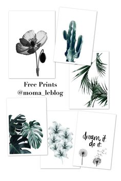 "{Printable} 6 ""jungle"" posters to print! Free Poster Printables, Printable Wall Art, Image Printable, Printable Templates, Poster S, Poster Wall, Images Jungle, Deco Jungle, Image Deco"