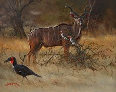 Wildlife artist, Lute Vink. (: also known as one of the best wildlife artists in the world and obviously in South Africa. Also known as my dad ♥♥ Painting: Kudu and various birds
