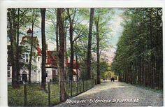 HANNOVER * 1912 Eilenriede Steuerndieb