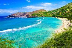 Hawaii Cruise: Bites, Brews, and Breathtaking Views