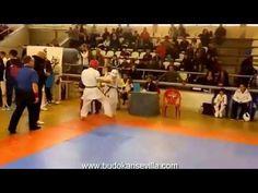 Homenaje a Andreas & Catalin Berbescu (Budokan Sevilla) - YouTube