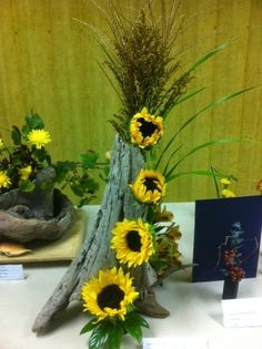 floral design with driftwood and sunflowers  gardenclubjournal.blogspot.com