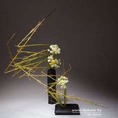 Sogetsu Ikebana in Two Containers by Ilse Beunen