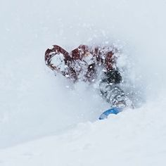 Peace Park turned to Pow Park overnight, as @ben_ferguson quickly realized.   Photo: @deanblottogray