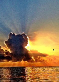 Sunrise and her favorite cloud on Fort Lauderdale beach via Beautiful Sky, Beautiful Landscapes, Beautiful World, Beautiful Images, Sunset Photos, Nature Photos, Seasons In The Sun, Fort Lauderdale Beach, Colorful Clouds