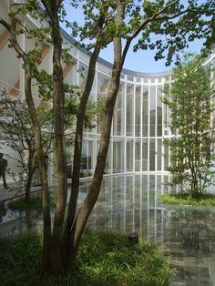 楕円虚の家 / 坂茂建築設計