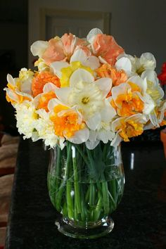 Daffodils - my favorite flower & it always makes me think of home.