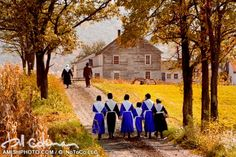 "Amish Wedding - ""Sarah's Wedding"". ""Sarah is one of seven sisters and her wedding was one of five in as many years. This family had their hands full for quite a stretch of time."""