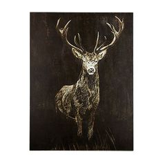 """The Stag 36"""" X 48"""" Print"""
