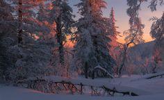 35PHOTO - marateaman - Поэзия зимнего вечера