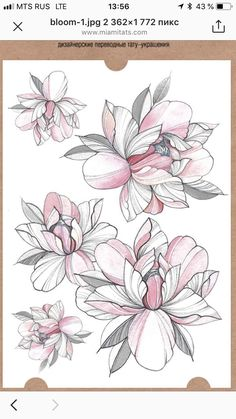 37 Lovely Flower Tattoo Suitable For Women tattoos, flower tattoos, tattoo ideas,tattoo for women Flower Tattoo Drawings, Flower Tattoo Designs, Flower Tattoos, Body Art Tattoos, Sleeve Tattoos, Vintage Flower Tattoo, Magnolia Tattoo, Tattoo Zeichnungen, Geniale Tattoos