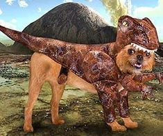 The Raptor Dog Costume Lets Your Pet Dress up as a Dinosaur #petcosplay trendhunter.com