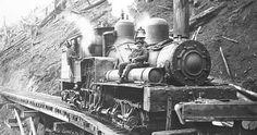 Walville Lumber Company locomotive or train 1907 by Tzolkin Summerson