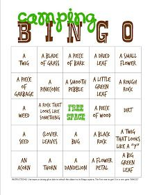 Camping bingo & scavenger hunt..... you could make it harder for older kids and easier for the little ones. love it! #campingfun #camping