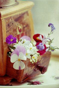 flower drawer